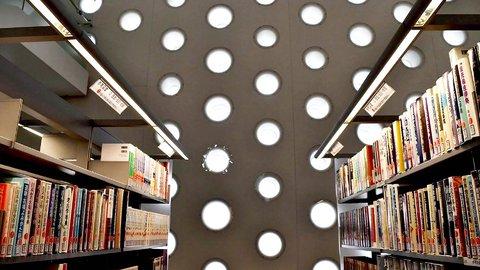 「木漏れ日」のなかで本を愛でる。美しい光が差し込む「金沢海みらい図書館」