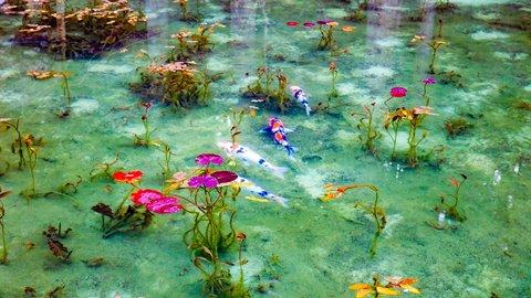 その美しさ、アート界の宝。日本、世界の「モネの池」をめぐる