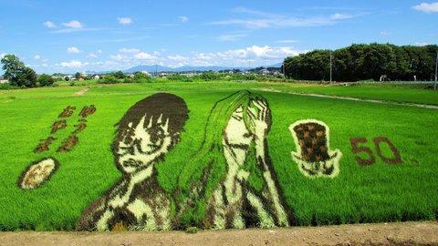 弱ペダをここまで再現できるとは。栃木県小山市の「田んぼアート」