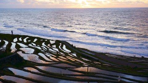 古き良き日本の絶景。海を背景に棚田が広がる「白米千枚田」への旅