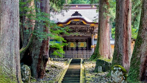 凛とした空気に触れる。修行僧が暮らす禅の大本山、福井「永平寺」へ