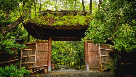 寵愛と、心変わりと。清盛に運命を翻弄された美女を京都に訪ねる