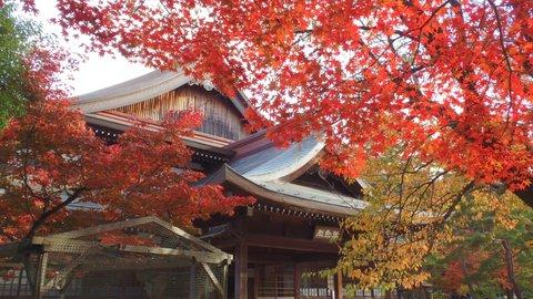京都府内の紅葉 寺院仏閣を中心とした穴場スポット16選【2019】