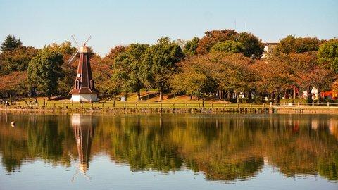 鳥たちと、ちょっぴり休憩。風車まわる東京のオアシス「浮間公園」