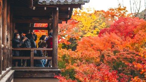 まるで紅葉の雲海。秋に美しさを増す、京都「東福寺」の歴史と魅力