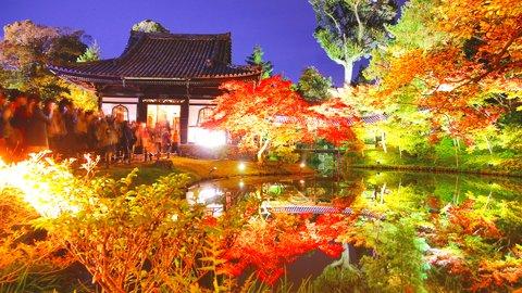 押さえておきたい深い歴史。豊臣秀吉ゆかりの京都「高台寺」