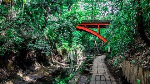 東京の新緑に癒される。自然豊かな都内の「森林浴スポット」7選