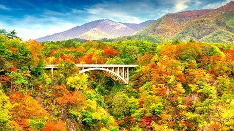 秋色の絶景に心惹かれる。宮城県「鳴子峡」の紅葉で秋を満喫