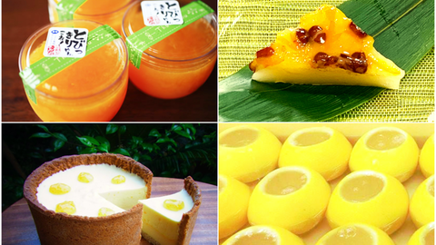 涼を感じる!暑い夏に食べたい、京都の爽やか柑橘スイーツ5選