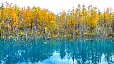 一度見たら忘れられない。全国にある神秘的な「青の湖・池」10選