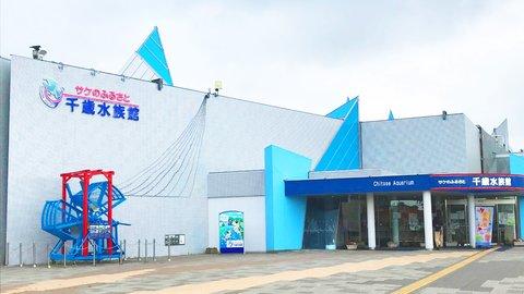 世界の魚たちが集結!ビッグすぎる北海道「サケのふるさと千歳水族館」