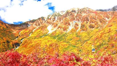 世界をも魅了した日本の絶景。富山県の「紅葉絶景」スポット4選