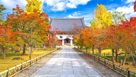 授業では習わない、家康の本当の顔。京都「智積院」の知られざるヒストリー
