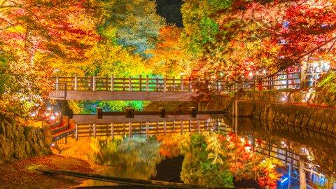 愛知が誇る絶景スポット。美しすぎる紅葉の名所「岩屋堂公園」