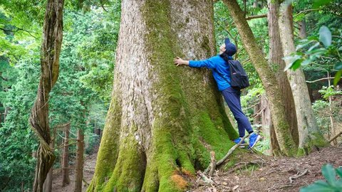 すぐそばにある大自然「綾部トレイル」でトレッキングはいかが?
