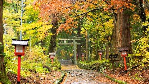 広大な山々が魅せる秋景色。鳥取の絶景「紅葉」スポット5選