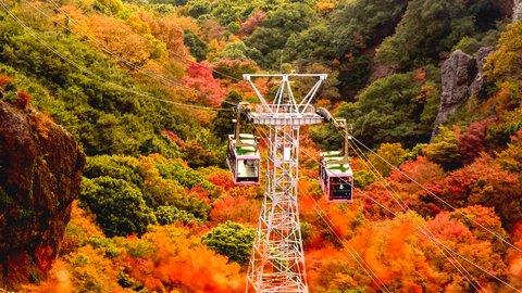 絶好調だぜ、うどん県。秋冬に行きたくなる「香川」美食&絶景の魅力