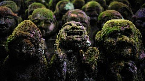 思わず二度見してしまう、京都にある珍しい「神社・寺院」7選