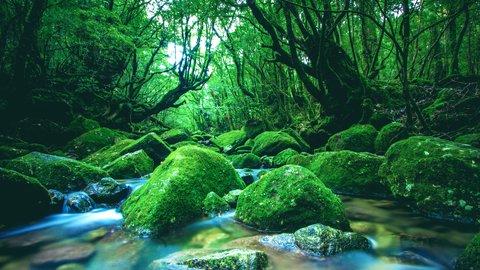 自然に囲まれたスローライフを。日本の「居心地のいい地域」ランキング