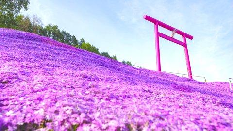 雄大な北海道の絶景を求めて。自然あふれる美しき「道東」スポット3選