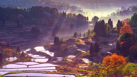 日本人の心を癒す、懐かしい絶景。郷愁漂う新潟県「星峠の棚田」の魅力とは