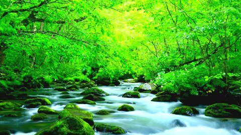 まるで神からの贈り物。絶景に心奪われる国内の人気「湖沼・渓谷」ランキング