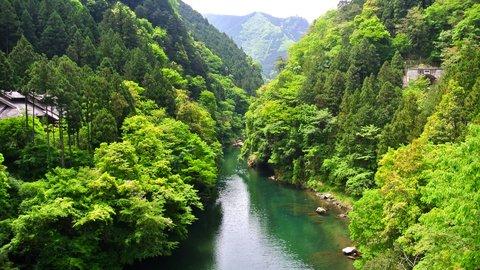 都心からのドライブにも最適。自然豊かな東京の秘境「奥多摩」の魅力