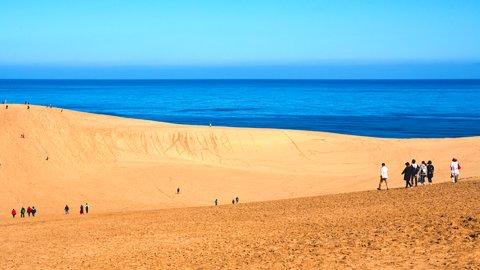 絶景のアクティビティ。自然あふれる大きな遊び場「鳥取砂丘」の楽しみ方