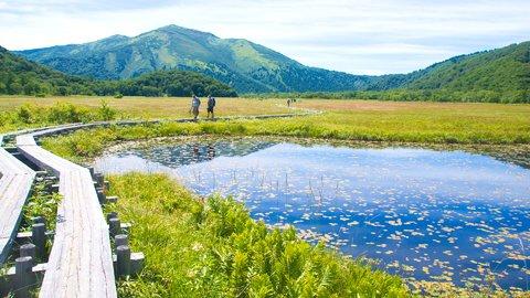日本の絶景の宝庫。初心者でも楽しめる「尾瀬国立公園」ハイキングコース