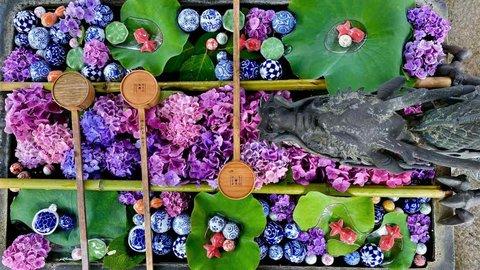 【2021年】梅雨を彩る、美しい紫陽花(アジサイ)~京都府の名所7選