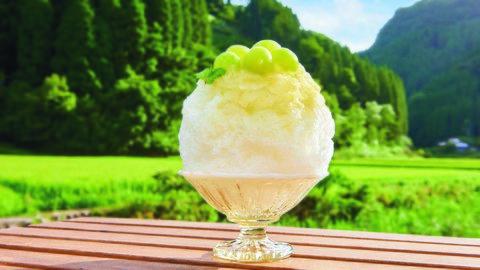 新感覚の「焼きかき氷」も!夏の暑さを吹き飛ばす大分県のひんやりスイーツ4選