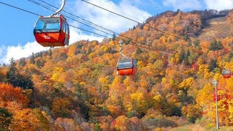 ひと足お先に紅葉狩り!秋の絶景が広がる北海道の「紅葉スポット」6選