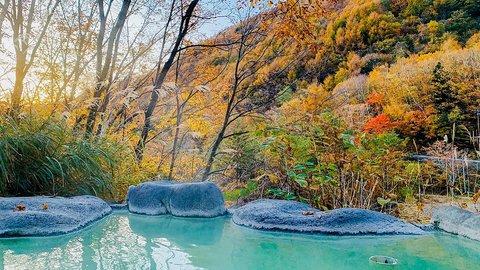 信州「七味温泉」は、高山村の大自然に囲まれた超穴場の極上温泉だった