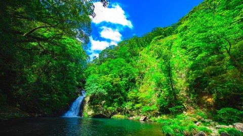 祝・世界遺産認定!美しすぎる「奄美大島、徳之島、沖縄島北部及び西表島」の魅力