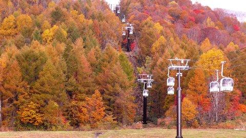 空中から最高の絶景を。秋を満喫する新スポット「裏磐梯紅葉ロープウェイ」